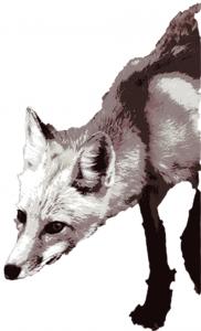 header_fox