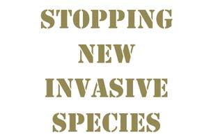 Stopping new invasive species