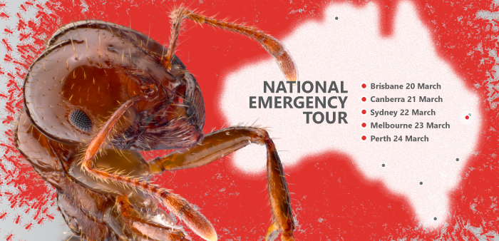 Fire Ants Down Under - our national emergency tour is on