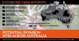 Feral deer are rapidly expanding thoughout south eastern Australia. A recent research paper shows that based on preferred climate, they are likely to spread much further. This map focuses on the possible expansion of just one deer species, red deer.