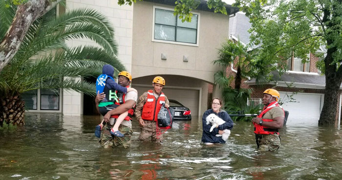 Texas National Guard soldiers arrive in Houston, Texas to aid citizens in heavily flooded areas from the storms of Hurricane Harvey. Frighteningly, rafts of fire ants were also seen on the rising floodwaters. Photo: Lt. Zachary West, 100th MPAD | Flickr | CC BY-ND 2.0