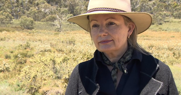 Australian environment minister Sussan Ley